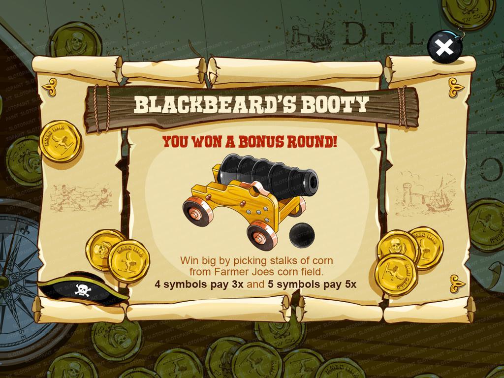 Blackbeard's Booty_bonusgame