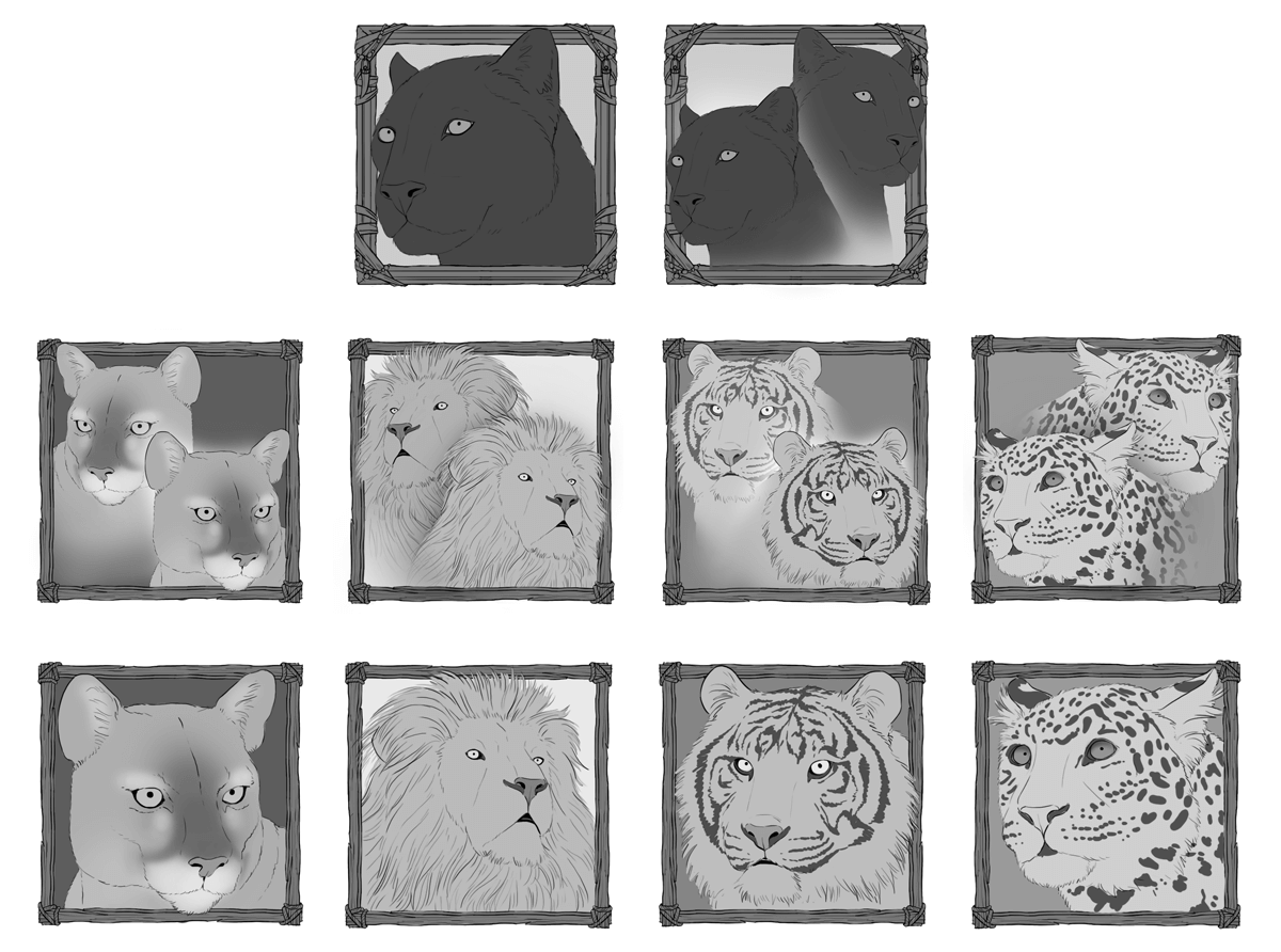 cats-of-the-world_mid-sketches