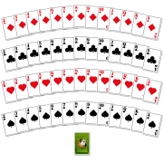 jungle-winwin_all_cards