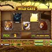 wild-cats_bonus-game