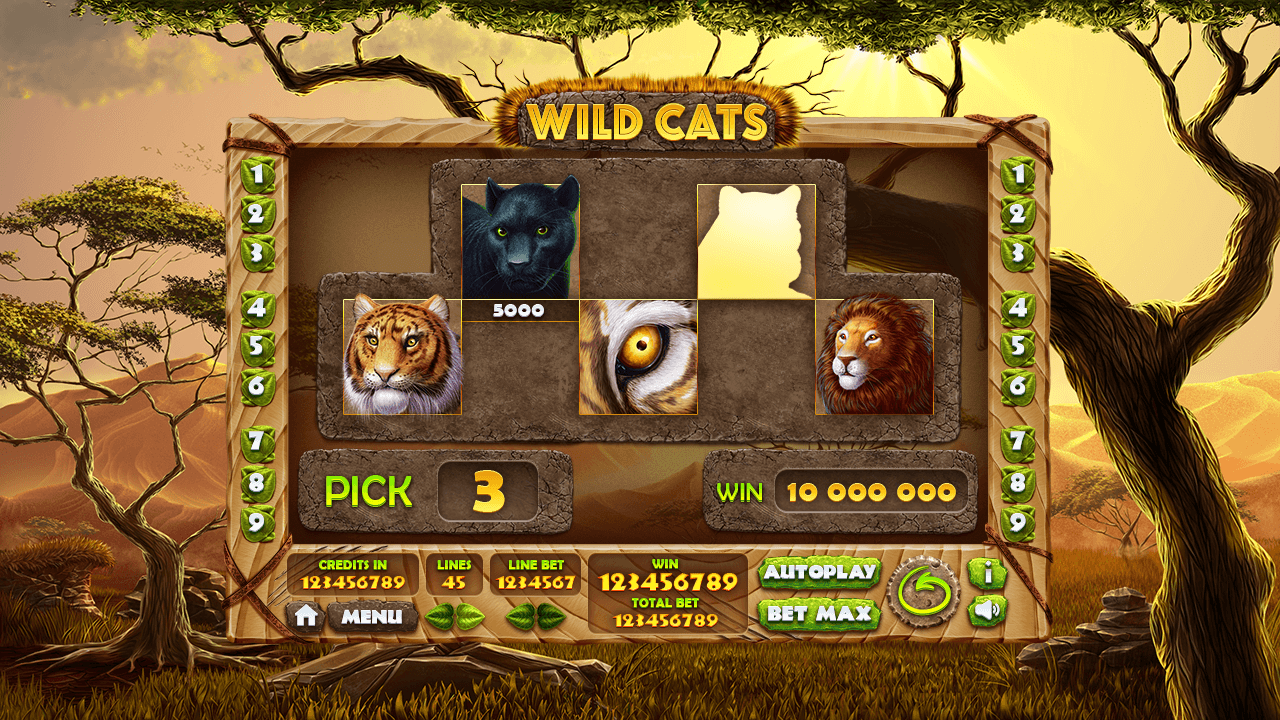 wild-cats_bonus-game