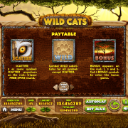 wild-cats_paytable1