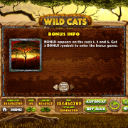 wild-cats_paytable3