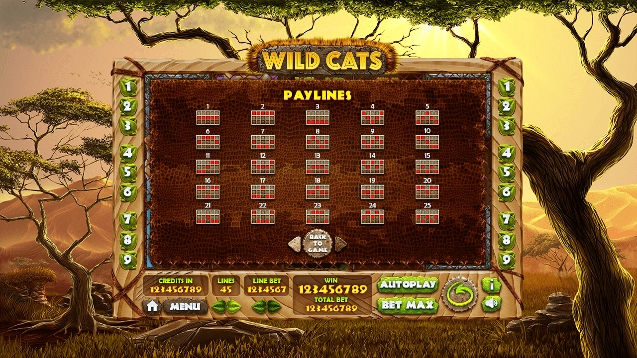 wild-cats_paytable4