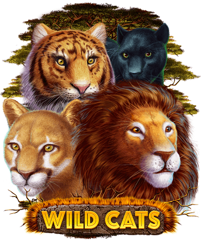 wild-cats_preview