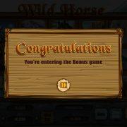 wild_horse_popup-3