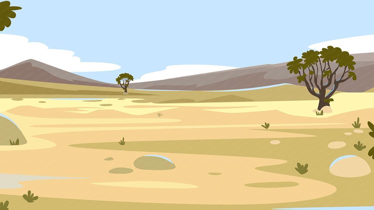 kangaroo_background