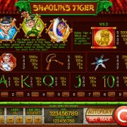 shaolins-tiger_paytable