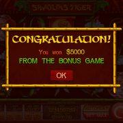 shaolins-tiger_popup-4