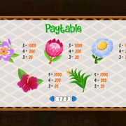 flower_gallery_paytable-2