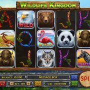 wildlife_kingdom_reels