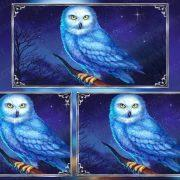 greece_miracles_owl