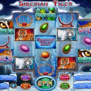 siberian_tiger_reels_bonus