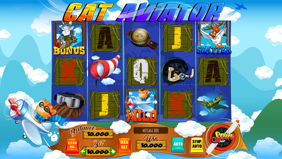 cat_aviator_reels