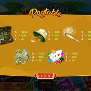 raccoon_in_vegas_paytable-2