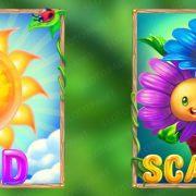 blossom_paradise_wild-scatter