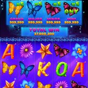 butterfly_jackpot_reels