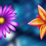 butterfly_jackpot_symbols_2
