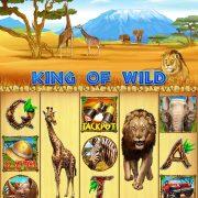 king_of_wild_reels