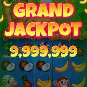 monkey_jackpot_win_jackpot_grand