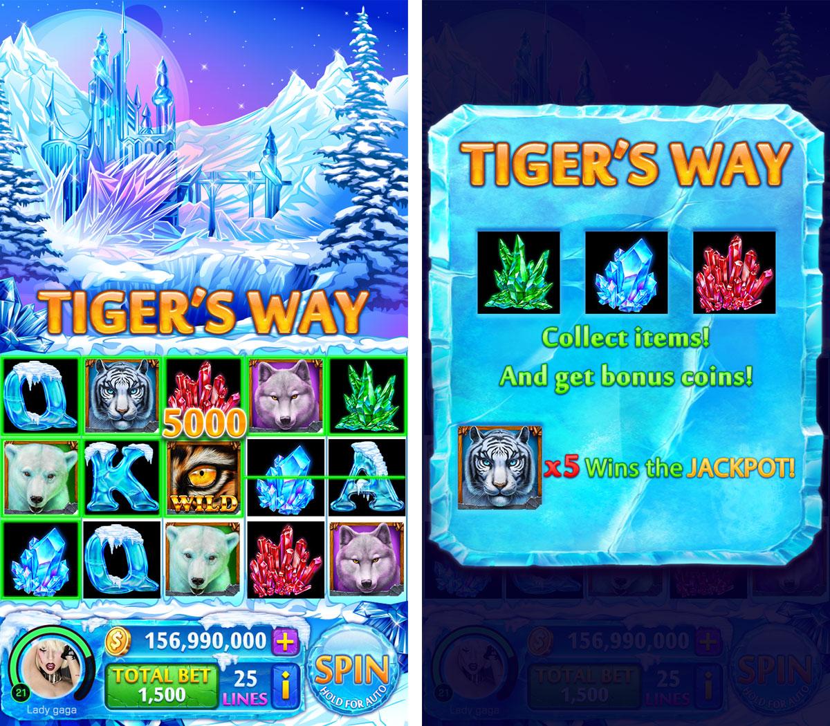 tigers_way_blog_info