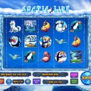 arctic_life_reels