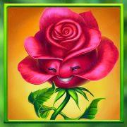blossom_paradise_desktop_symbols-1