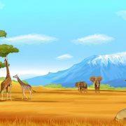 king_of_wild_desktop_background