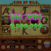 king_of_wild_desktop_bigwin
