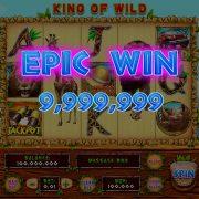 king_of_wild_desktop_epicwin