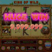king_of_wild_desktop_hugewin