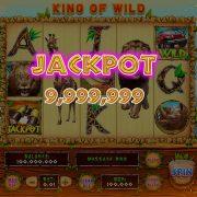 king_of_wild_desktop_jackpot