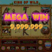 king_of_wild_desktop_megawin