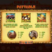 king_of_wild_desktop_paytable-1