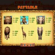 king_of_wild_desktop_paytable-2