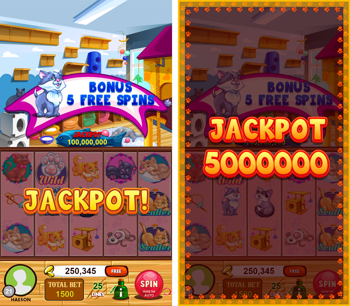lovely_cat_blog_jackpots