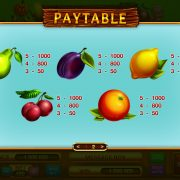 garden_cross_paytable-2