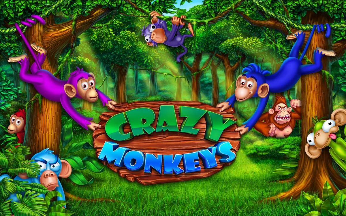 crazy_monkeys_splash_screen