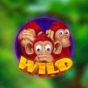 crazy_monkeys_symbols-1