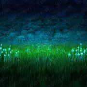 mystic_forest_background
