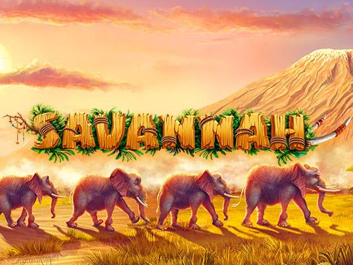savannah_blog_preview